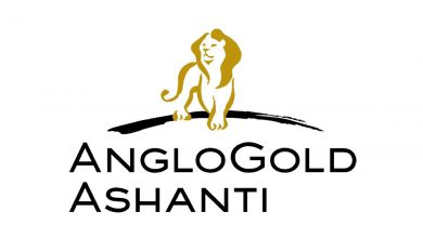 Photo of Civil Engineering Internship Job Opportunity at AngloGold Ashanti – Geita Gold Mine