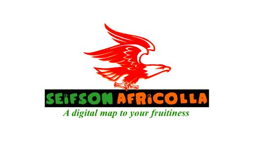 Job at SEiFSON AFRiCOLLA