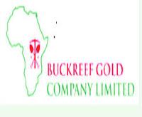 Senior Procurement Officer Job at Buckreef Gold Mining 2021
