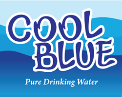 Financial Controller Job Opportunity at Cool Blue Tanzania