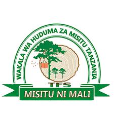 Tanzania2BForest2BServices2B2528TFS25292B 2BTanzania 1